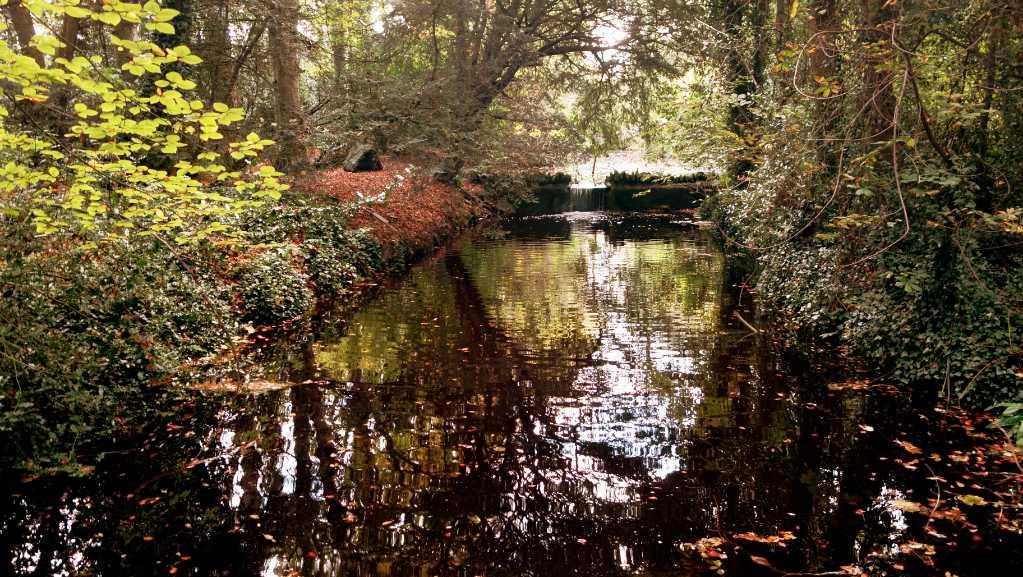 Near Restful Waters